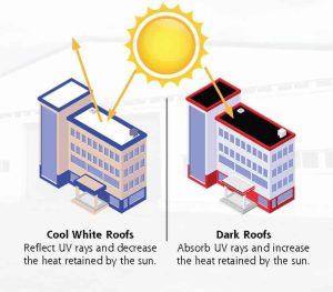 White vs Black Commercial Roofs