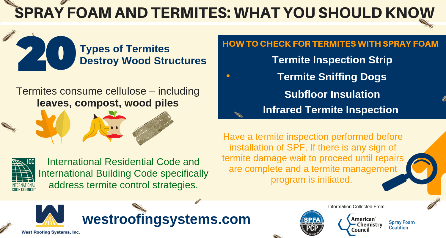 Spray Foam and Termites: What You Need To Know | Cleveland