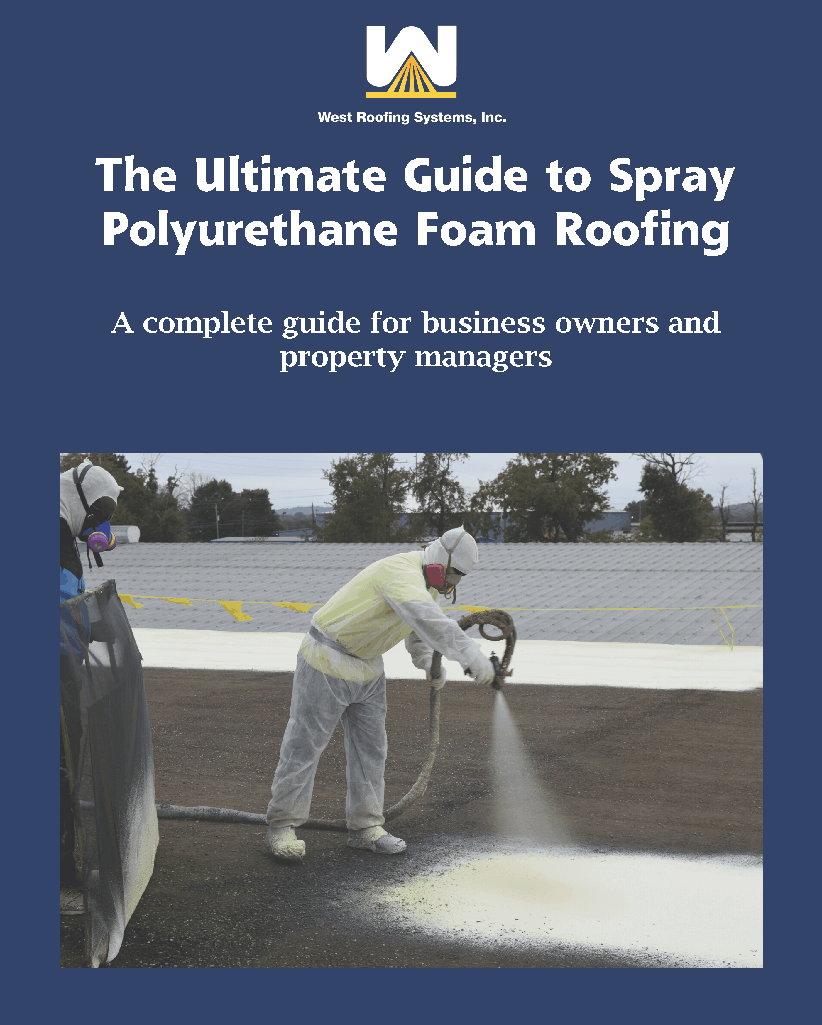 Can You Spray Paint Roof Shingles