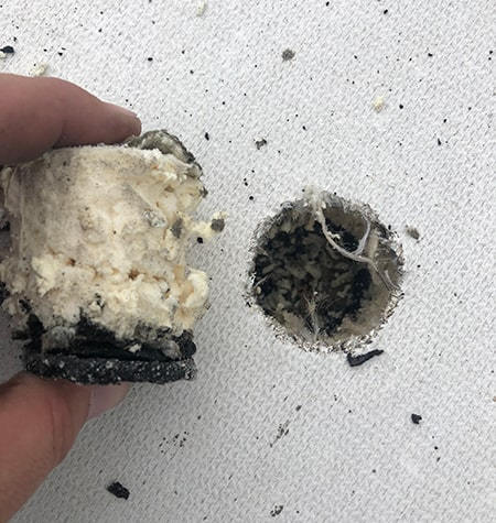 core sample from a commercial roof